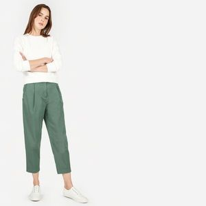 Everlane the slouchy pleated front chino pants